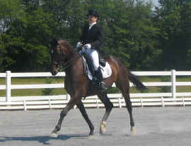 Training at Blue Spruce Dressage Farm